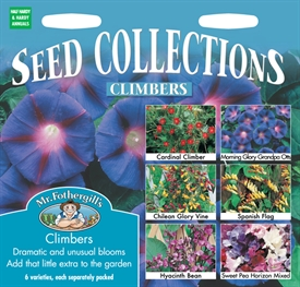 Climbers Seed Collection