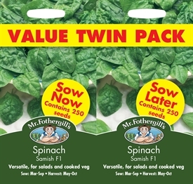 Spinach Samish Seed Bumper Pack