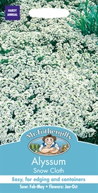 Alyssum Snow Cloth Seed