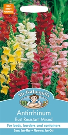 Antirrhinum Rust Resistant Mixed Snapdragon Seed