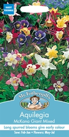 Aquilegia Mckana Giant Mixed Grannies Bonnet Seed