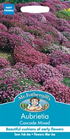 Aubrietia Cascade Mixed Seed