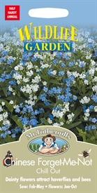 Chinese Forget-Me-Not Chill Out Seed