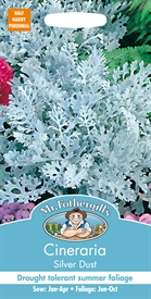 Cineraria Silver Dust Seed