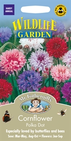 Cornflower Polka Dot Seed