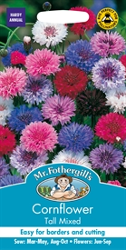 Cornflower Tall Mixed Seed