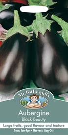 Aubergine Black Beauty Seed