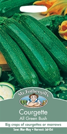 Courgette All Green Bush Seed