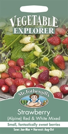 Strawberry Alpine Red & White Mixed Seed