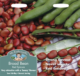 Broad Bean Red Epicure Seed