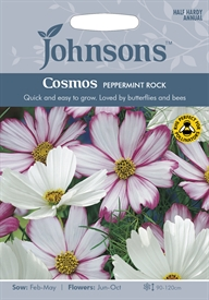 Cosmos Peppermint Rock