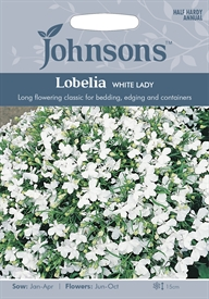 Lobelia Bush  White Lady