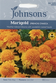 Marigold French Chasca