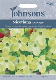 Nicotiana Lime Green