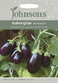 Aubergine Pot Black F1