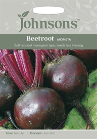 Beetroot Moneta Seed