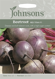 Beetroot Red Titan F1 Seed
