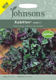 Kalettes® Mixed F1 Seed