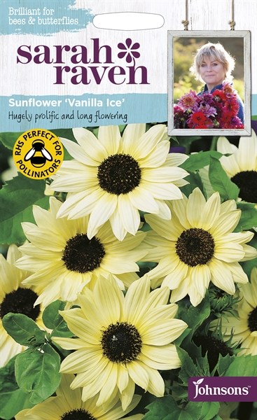 Sarah Raven Wildlife Flowers Sunflower Vanilla Ice seed