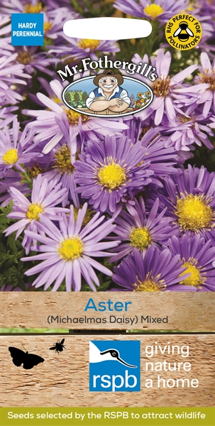 Aster Michaelmas Daisy Mixed RSPB Seed