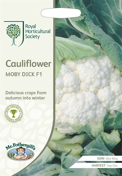 RHS Cauliflower Moby Dick F1  Seed