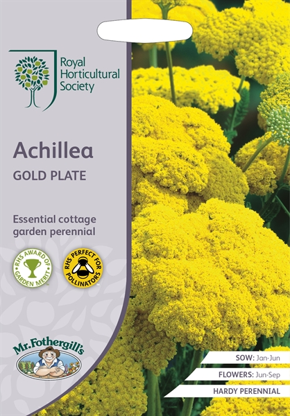 RHS ACHILLEA Gold Plate Seed