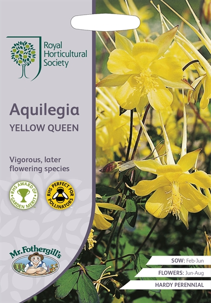 RHS AQUILEGIA Yellow Queen Seed