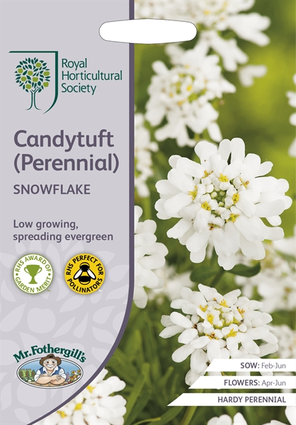 RHS CANDYTUFT (Perennial Candytuft) Snowflake Seed