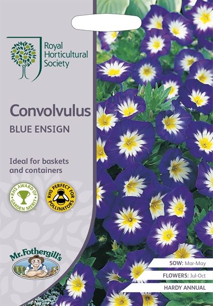 RHS CONVOLVULUS Blue Ensign Seed
