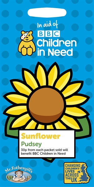 Children in Need SUNFLOWER Pudsey Seed