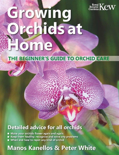 Growing Orchids at Home - The Beginner's Guide to Orchid Care