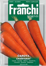 Carrot <i> Chantenay </i> seed