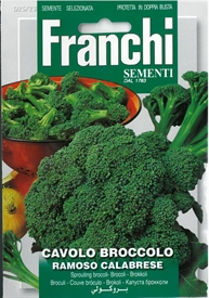 Broccoli of Calabria<i> Cavolo Broccolo Ramoso Calabrese</i> seed