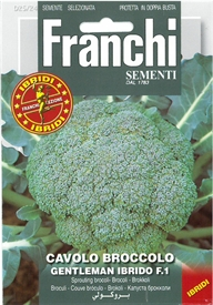 Broccoli <i>Cavolo broccolo Gentleman ibrido f1</i> seed