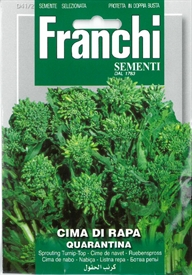 Sprouting Broccoli or Turnip top <i>Cima di Rapa Quarantina</i> seed