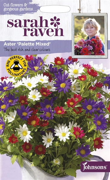 Sarah Raven Cut Flowers Aster Palette Mixed seed