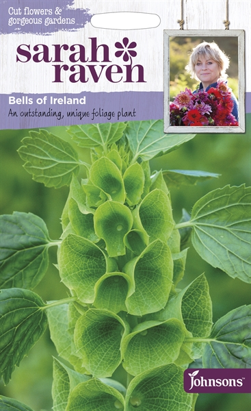 Sarah Raven Cut Flowers Bells of Ireland seed
