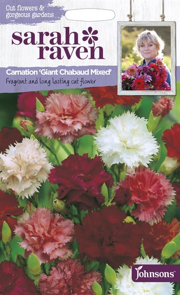 Sarah Raven Cut Flowers Carnation Giant Chabaud Mixed seed