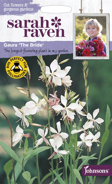 Sarah Raven Cut Flowers Gaura The Bride seed