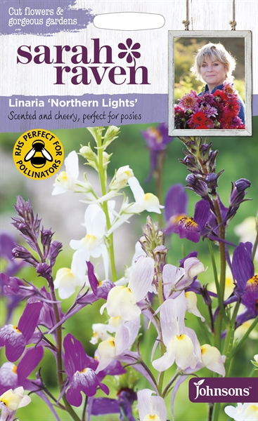 Sarah Raven Cut Flowers Linaria Northern Lights seed