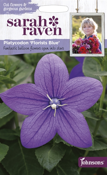 Sarah Raven Cut Flowers Platycodon Florists Blue seed