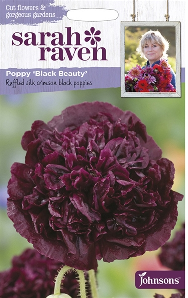 Sarah Raven Cut Flowers Poppy Black Beauty seed