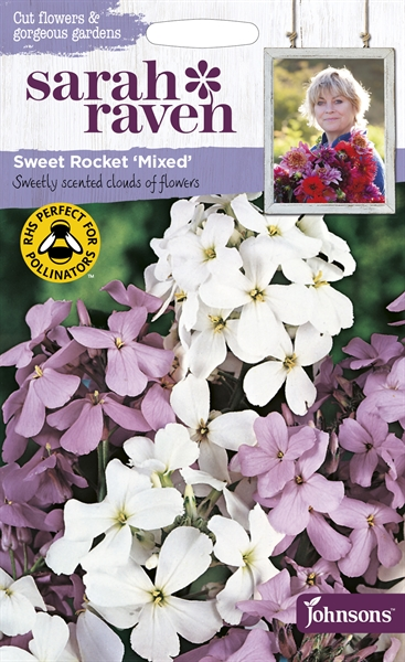 Sarah Raven Cut Flowers Sweet Rocket Mixed seed
