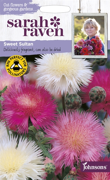 Sarah Raven Cut Flowers Sweet Sultan seed